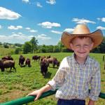 boy_bison_ranch